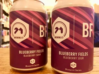 71 Brewing - Blueberry Fields - Sour